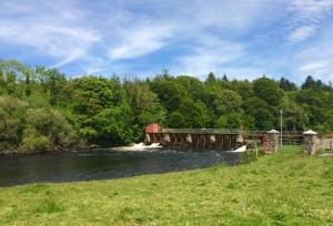 The Weir at Jamestown
