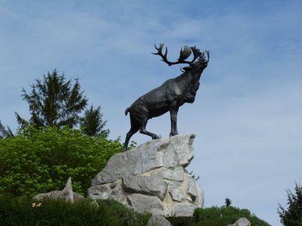 Caribou-au-Memorial-de-Beaumont-Hamel-de-Jacky-Salomon-Rivery